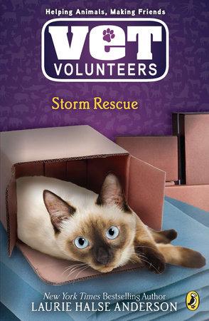 Storm Rescue