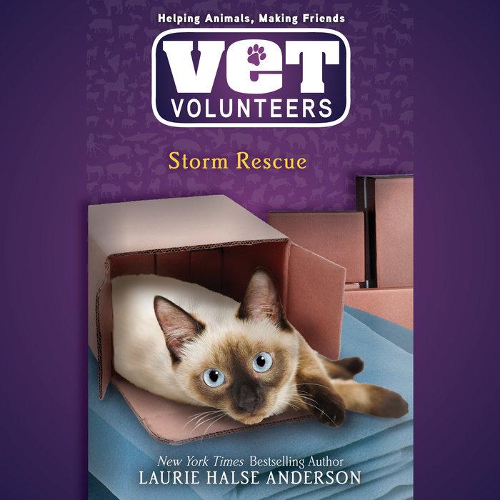 Storm Rescue – Audiobook