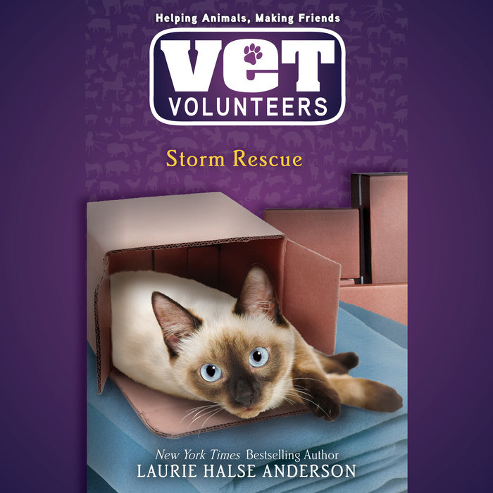 Storm Rescue – Audiobook